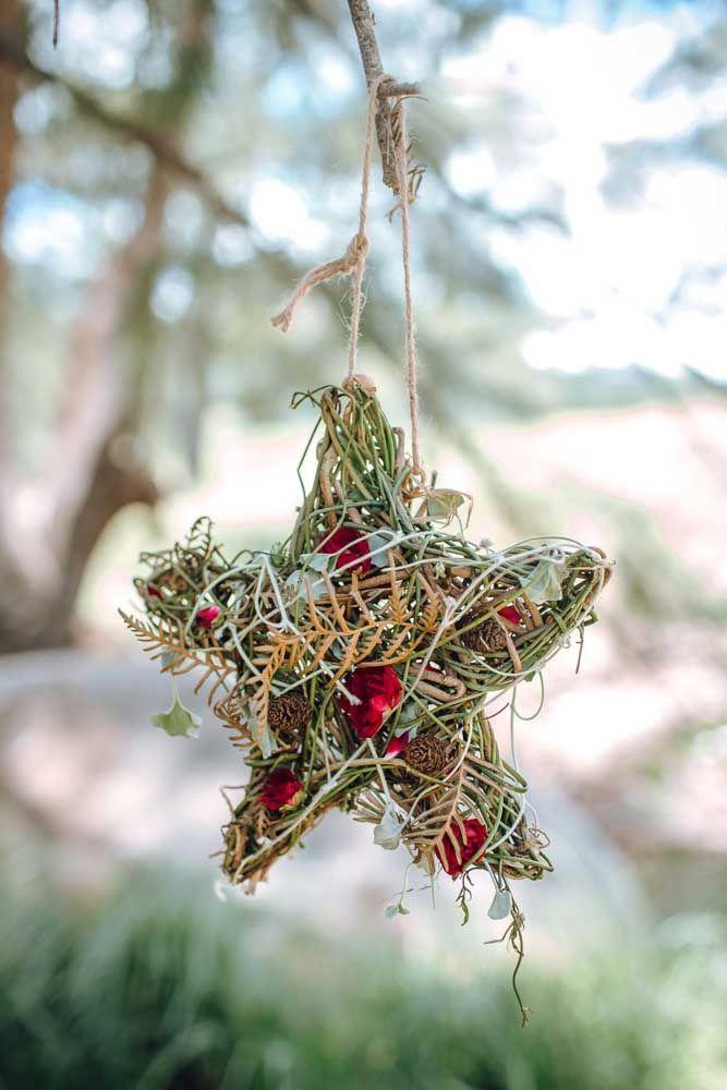 Une étoile inspirée des nids d'oiseaux