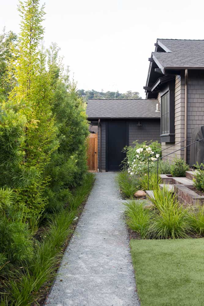Jardin avec podocarpe: effet rustique assorti à la maison