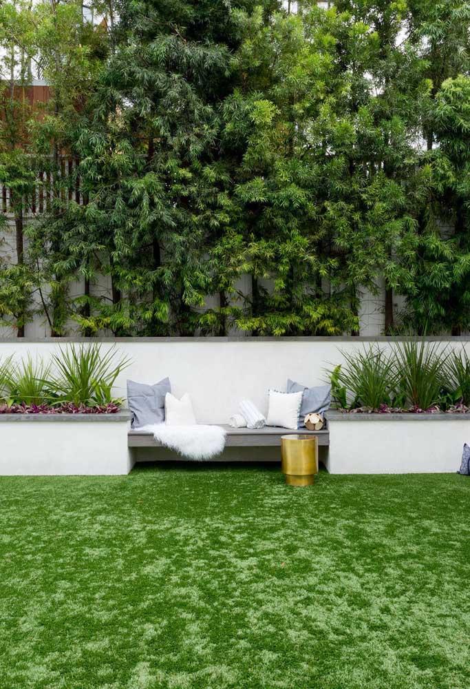 Le jardin classique et élégant a l'élégance des podocarpos en arrière-plan