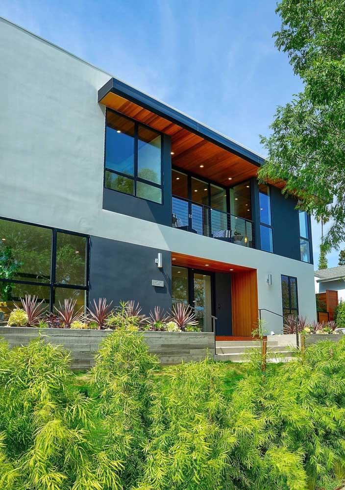 Jardin Podocarpos en harmonie avec l'architecture moderne de la maison