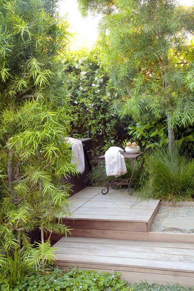 Ensemble, les podocarpos forment un massif vert parfait pour apporter plus d'intimité aux espaces, comme ici, à côté du bain à remous