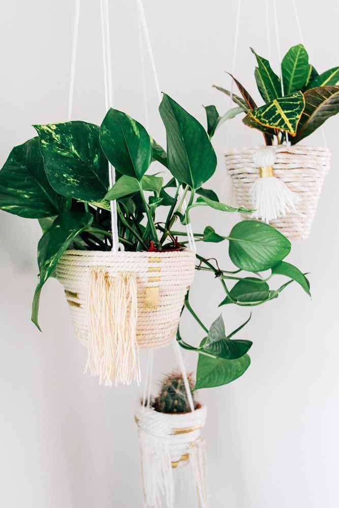Et le point culminant ici va au ton vert foncé des plantes en contraste avec le ton neutre des cache-pots