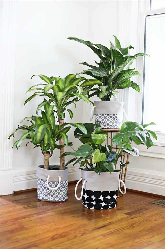 Le bosselage des canettes en aluminium est un élément fondamental de l'esthétique de ces pots recyclés