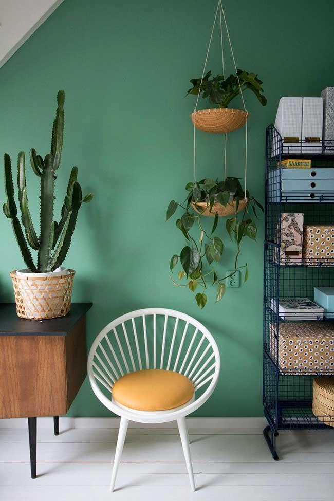Mur végétal et mobilier rétro