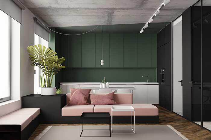 Cuisine et salon avec mur végétal